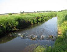 Rzeka Wołczenica