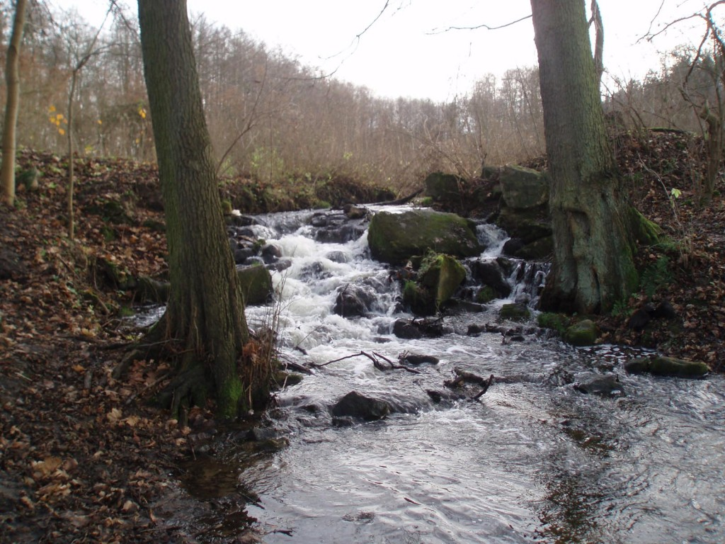 Rzeka Sławęcinka